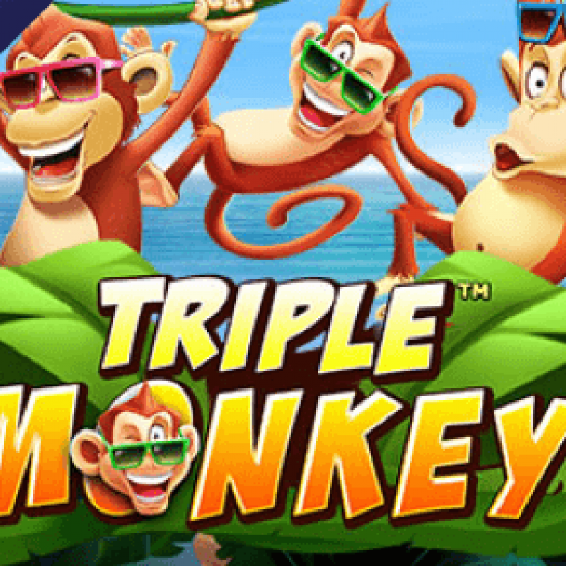 Crazy Like Monkey ~ Triple Monkey in Rollex 11 PC apk Install @ Liveslot77